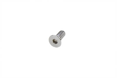 Allen Flat Head Screws Chrome 1/4 x 1""