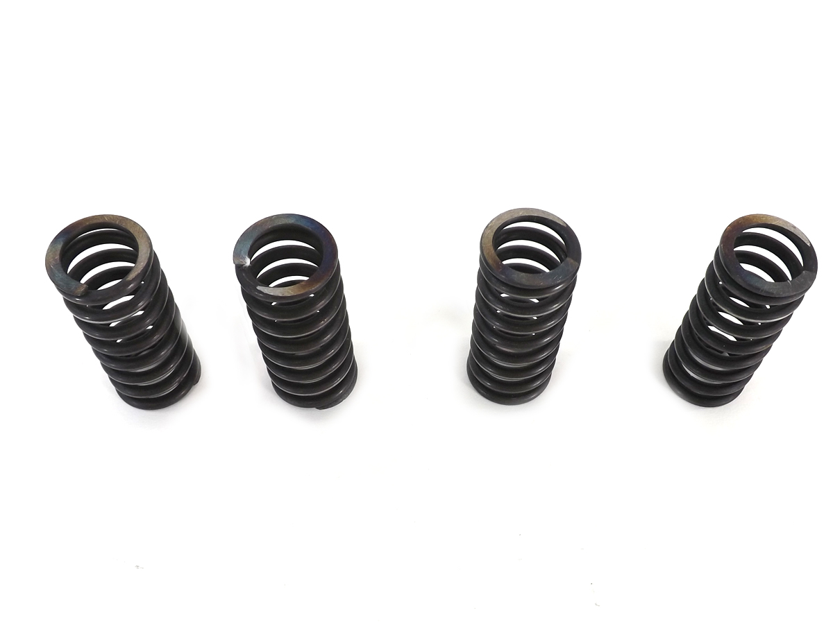 Indian Chief Valve Spring Set